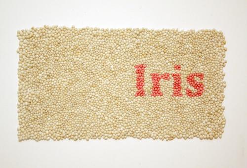 Iris004
