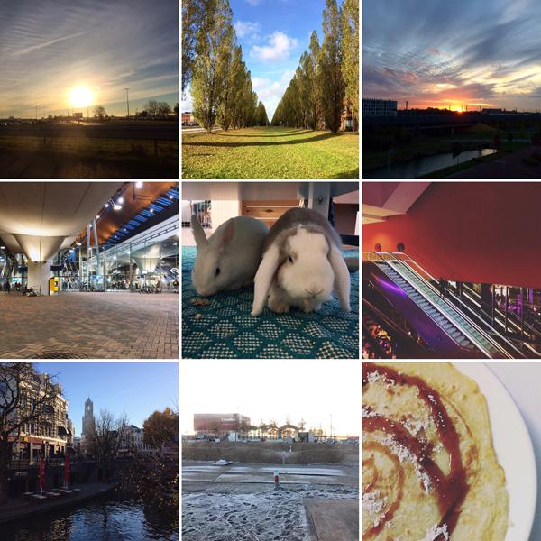 IMG_Maand_November_fotos
